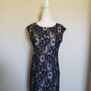 LOFT shift dress size 2p